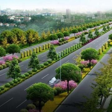 微山县林业局林场道路建设千赢千亿