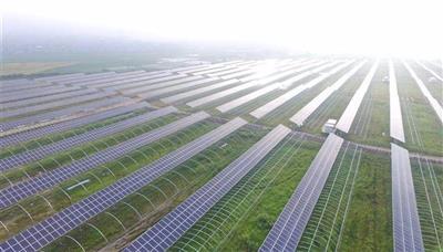 东平县东平街道生态大棚千亿国际开户