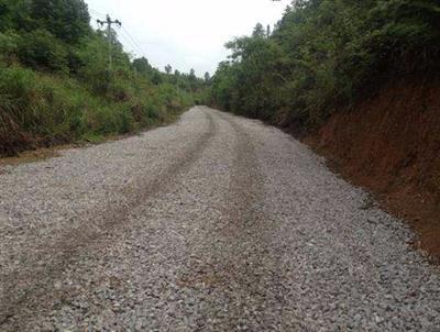 枣庄国有林场部通硬化路建设千赢手机app下载官网