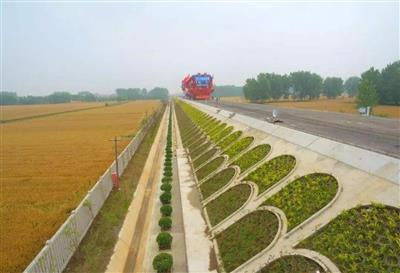 枣庄市常庄镇十字河绿化路基绿化千亿国际开户