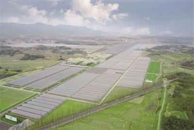 兖州后宫村生态农业建设千赢千亿